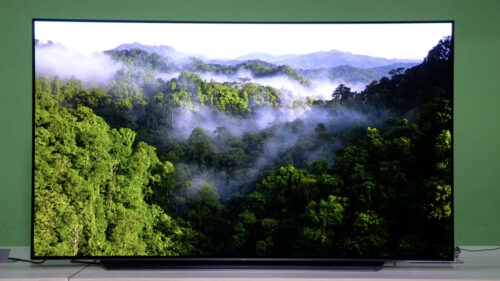 best oled tv in india