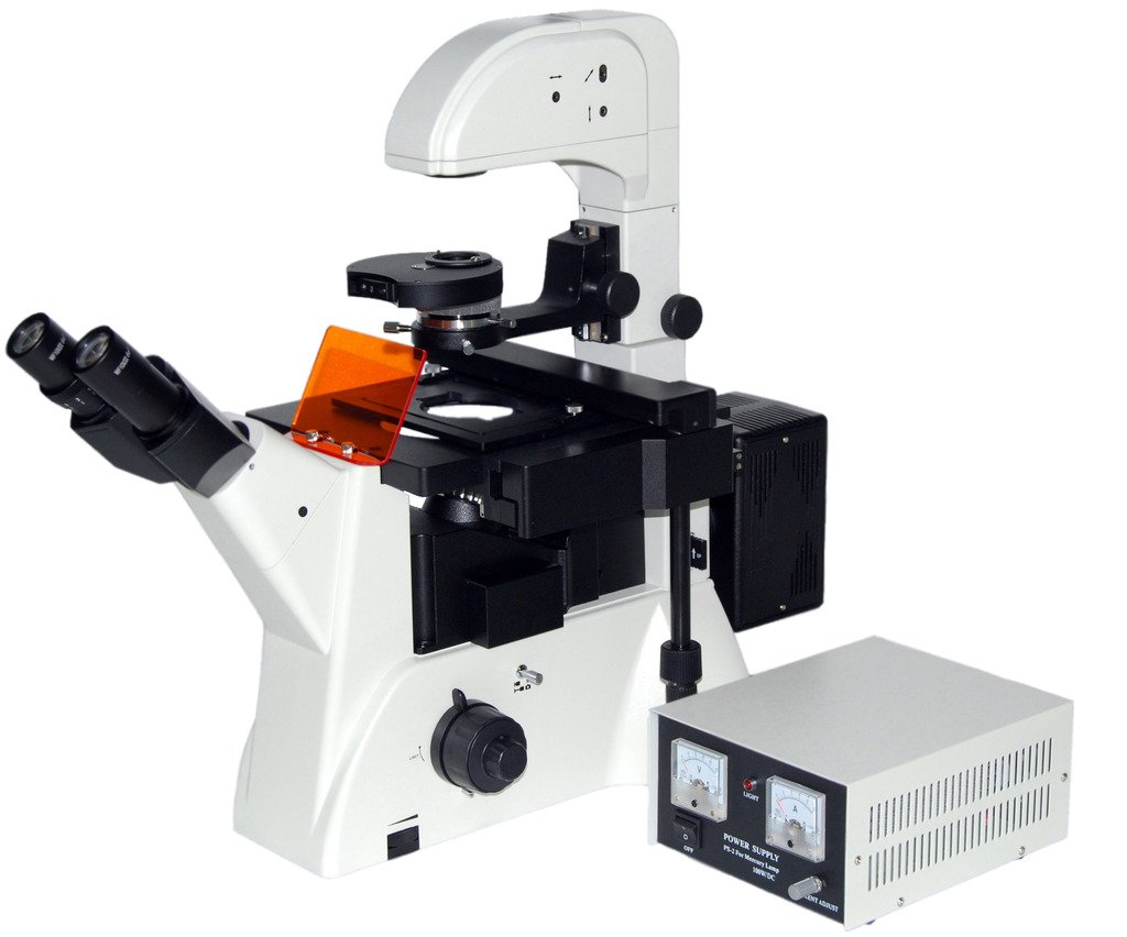 best microscope for tissue culture