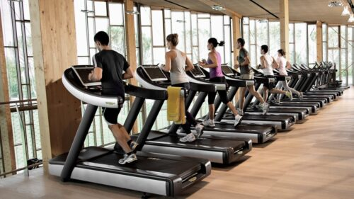 Best Treadmill Under 30000 in India