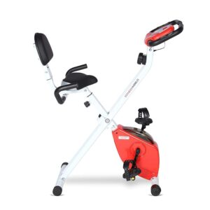 FITNESS WORLD Eazy Bike for Home and Gym